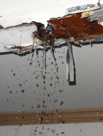 Water Damage from broken sprinkler systems